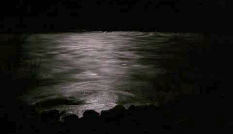 Colorado River Moonlight
