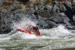 snakeriver_splash_row