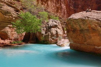 Pool on Havasu Creek, Grand Canyon National Park