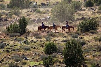 grand-canyon-ranch-horseback-desert