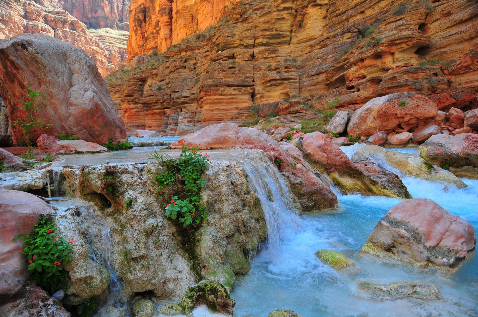 havasu canyon | how to visit havasu from the river