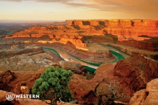 Dead Horse Point and the Colorado River