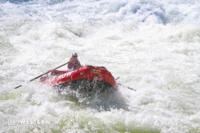 Rowing whitewater in Hell's Canyon